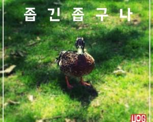 좁긴 좁구나 (Feat.손희신) – Hoggy